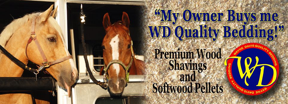 WD Quality Bedding   The Quality is in the Bag!